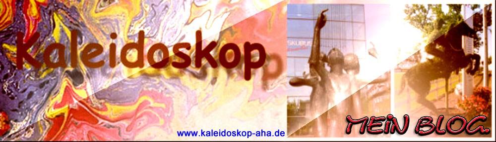 Der Blog aus Aachen
